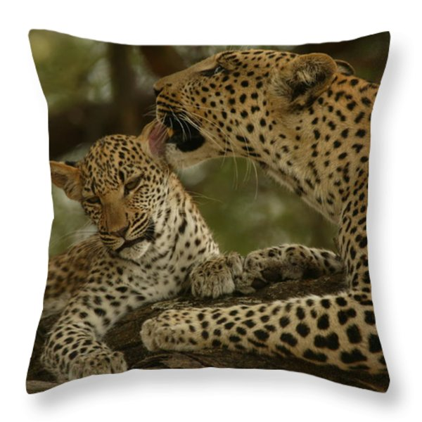 Mother leopard, Panthera Throw Pillow by National Geographic