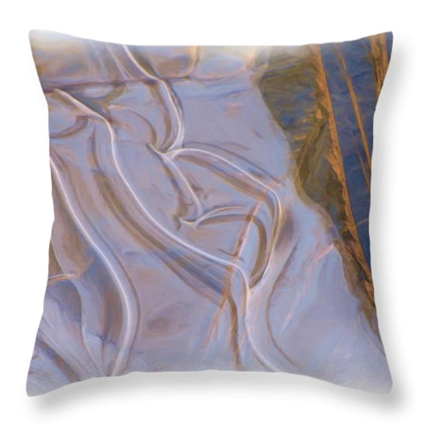 Mother Nature Does Ice Throw Pillow by Feva  Fotos