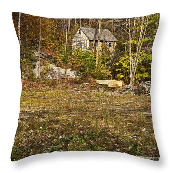 Mountain Cabin Throw Pillow by John Greim
