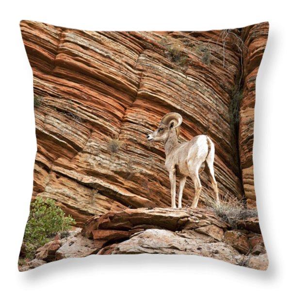 Mountain goat Throw Pillow by Jane Rix