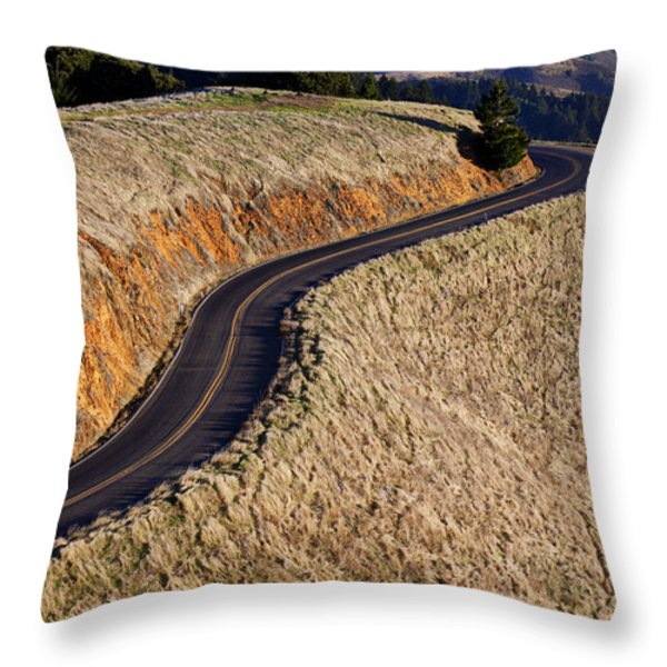 Mountain Road Throw Pillow by Garry Gay