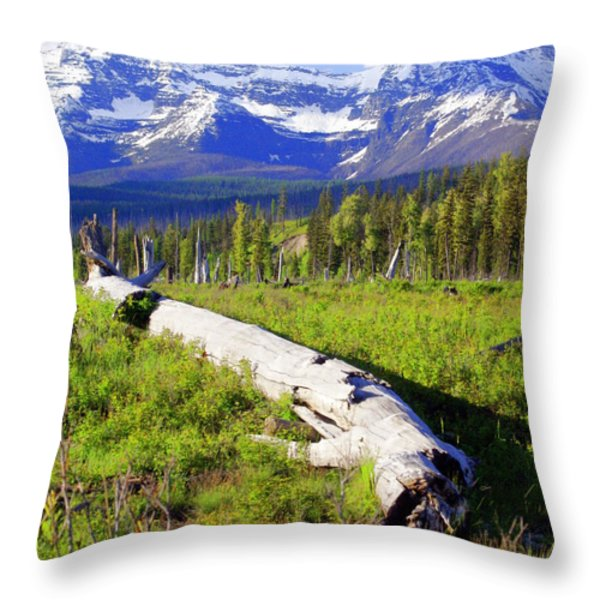 Mountain Splendor Throw Pillow by Marty Koch