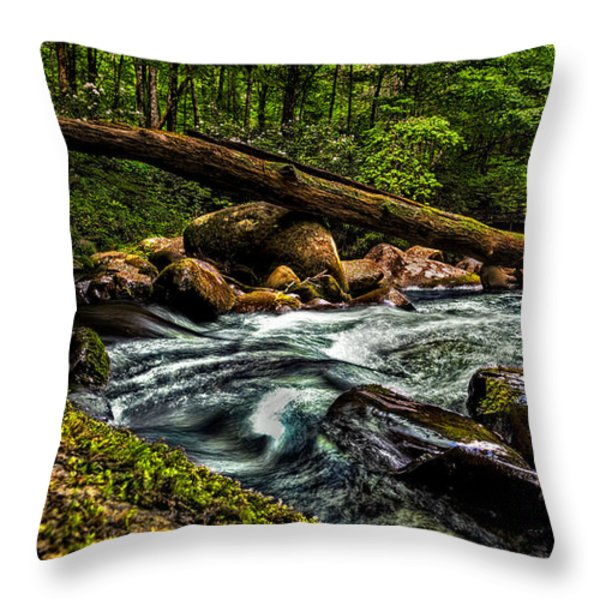 Mountain Stream Iv Throw Pillow by Christopher Holmes