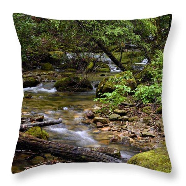 Mountain Stream Spring Throw Pillow by Thomas R Fletcher
