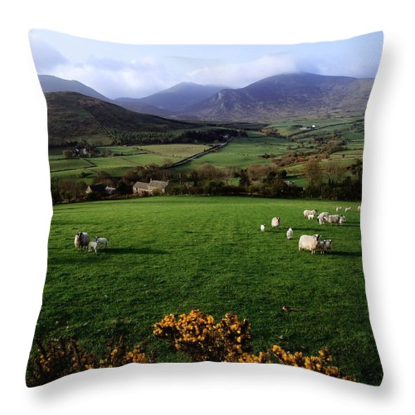 Mourne Mountains From Trassey Road, Co Throw Pillow by The Irish Image Collection