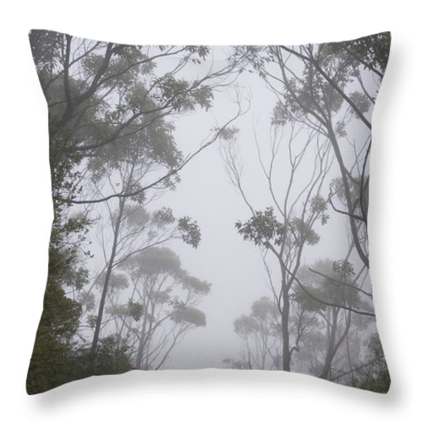 Mt Lanaihale, Munro Trail Throw Pillow by Greg Vaughn - Printscapes