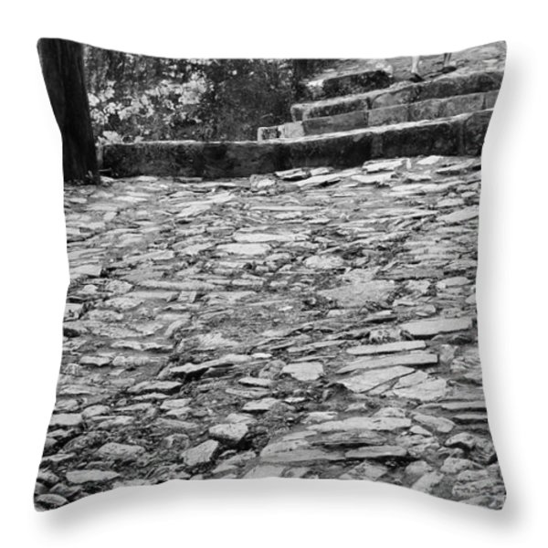 Mujer Fuerte Throw Pillow by Skip Hunt