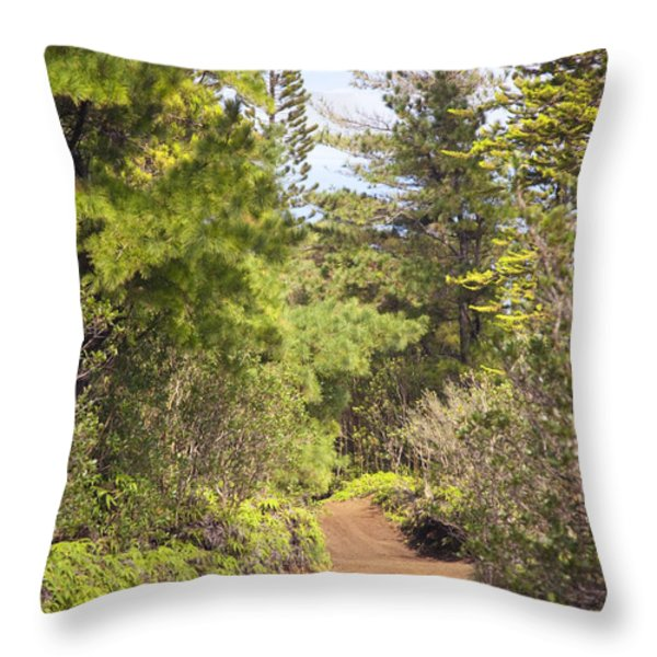 Munro Trail Throw Pillow by Ron Dahlquist - Printscapes