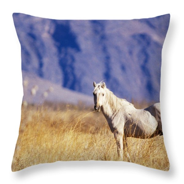 Mustang Throw Pillow by Mark Newman and Photo Researchers