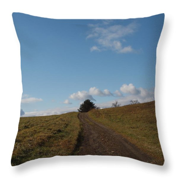 My Road Throw Pillow by Robert Margetts