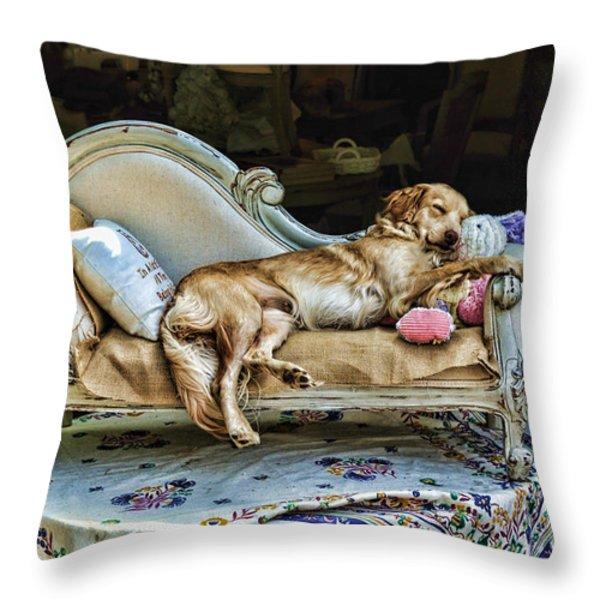 Nap Time Throw Pillow by Edward Sobuta