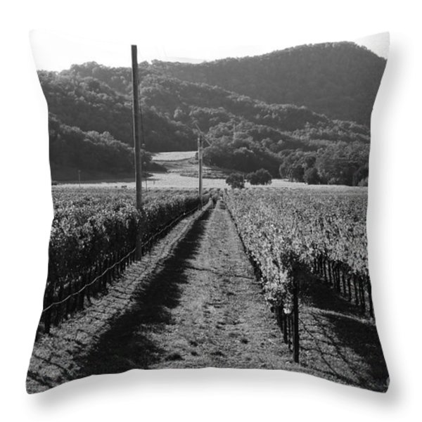 Napa Valley Vineyard .  Black and White . 7D9020 Throw Pillow by Wingsdomain Art and Photography