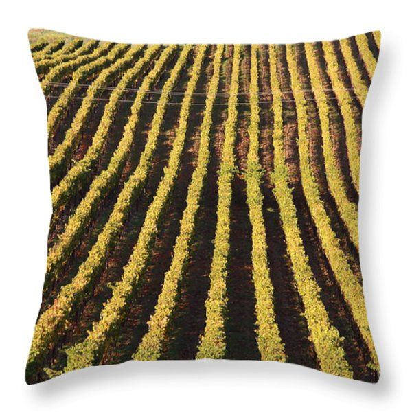 Napa Valley Vineyard . 7d9061 Throw Pillow by Wingsdomain Art and Photography