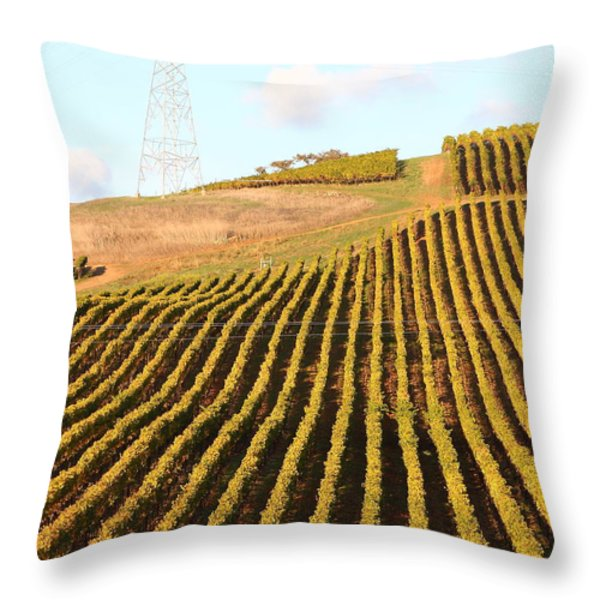 Napa Valley Vineyard . 7D9065 Throw Pillow by Wingsdomain Art and Photography