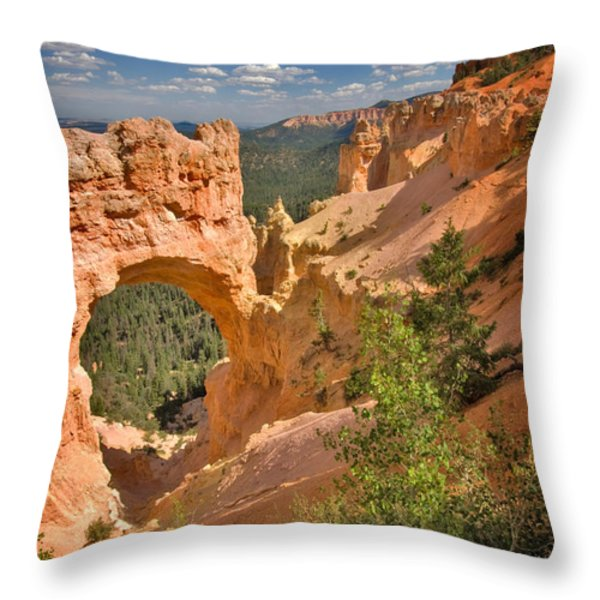 Natural Bridge In Bryce Canyon National Park Throw Pillow by Louise Heusinkveld