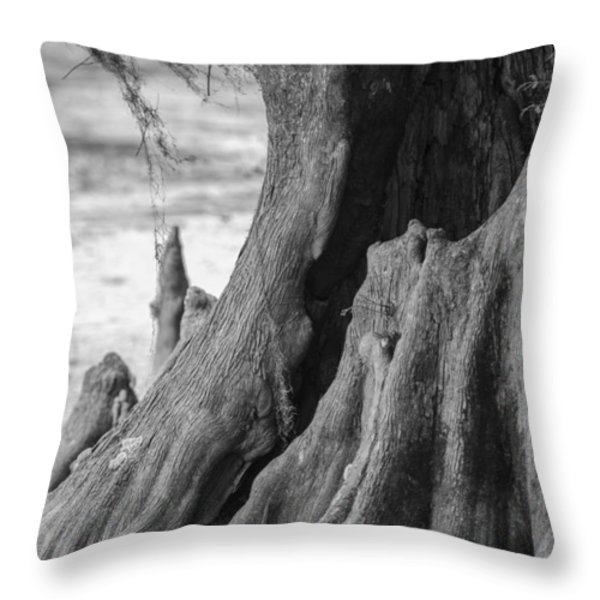 Natural Cypress Throw Pillow by Carolyn Marshall