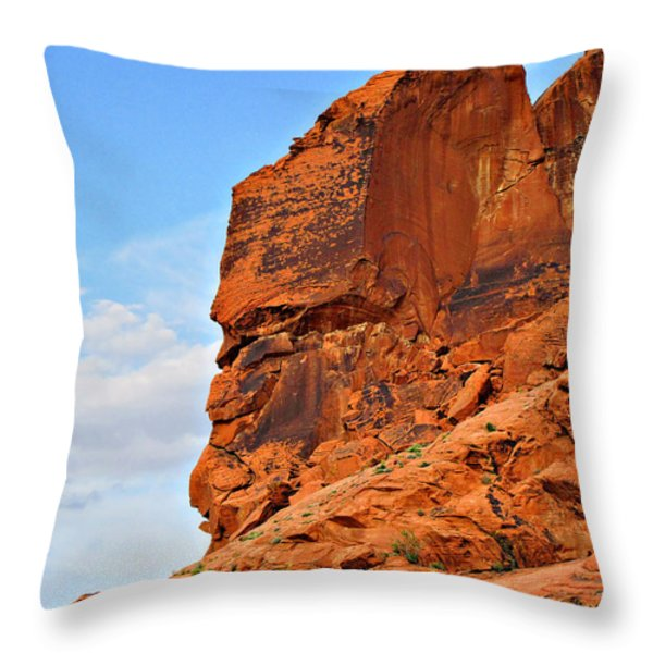 Nature - THE most eccentric artist Throw Pillow by Christine Till