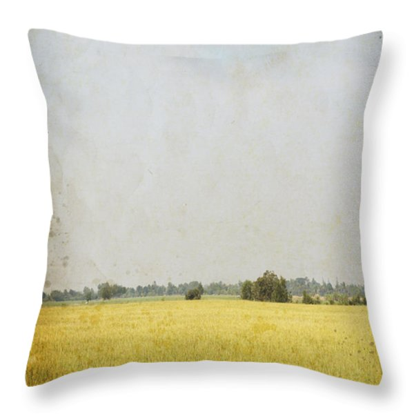 nature painting on old grunge paper Throw Pillow by Setsiri Silapasuwanchai