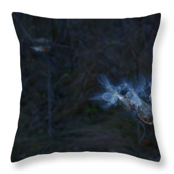 Natures Fairies Throw Pillow by Joanne Smoley
