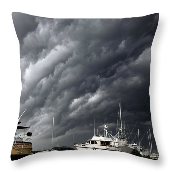 Natures Fury Throw Pillow by KAREN WILES