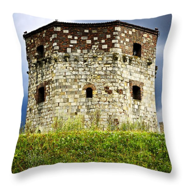 Nebojsa tower in Belgrade Throw Pillow by Elena Elisseeva