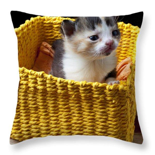 New Born Kitten Throw Pillow by Garry Gay