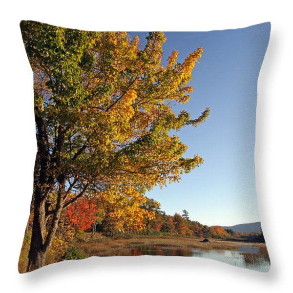 New Mills Meadow Pond Throw Pillow by Juergen Roth
