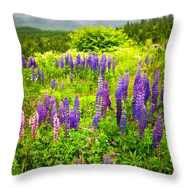 Newfoundland Meadow Throw Pillow by Elena Elisseeva