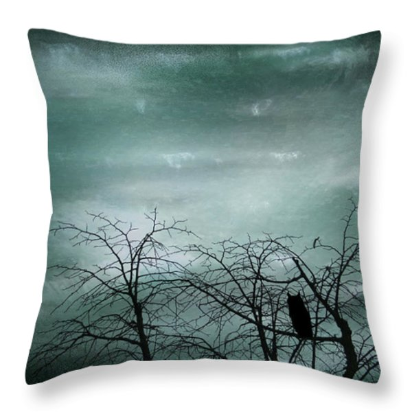 Night Owl Throw Pillow by Nomad Art And  Design