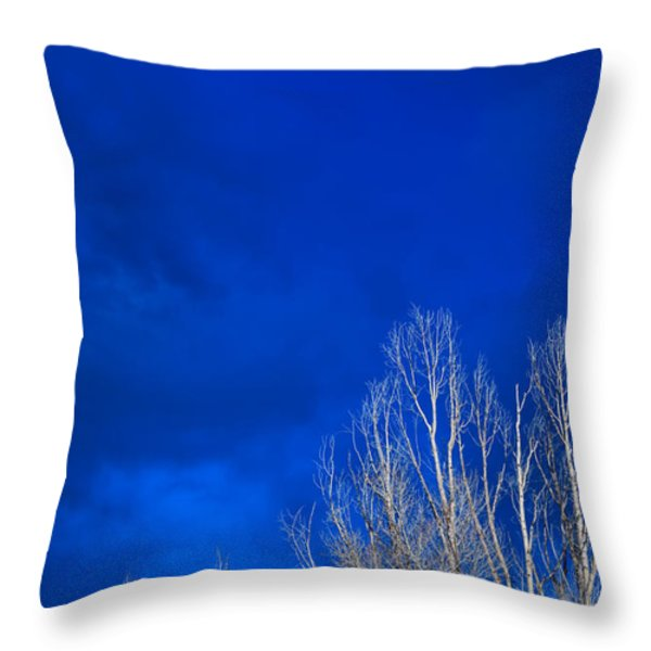 Night Sky Throw Pillow by Steve Gadomski