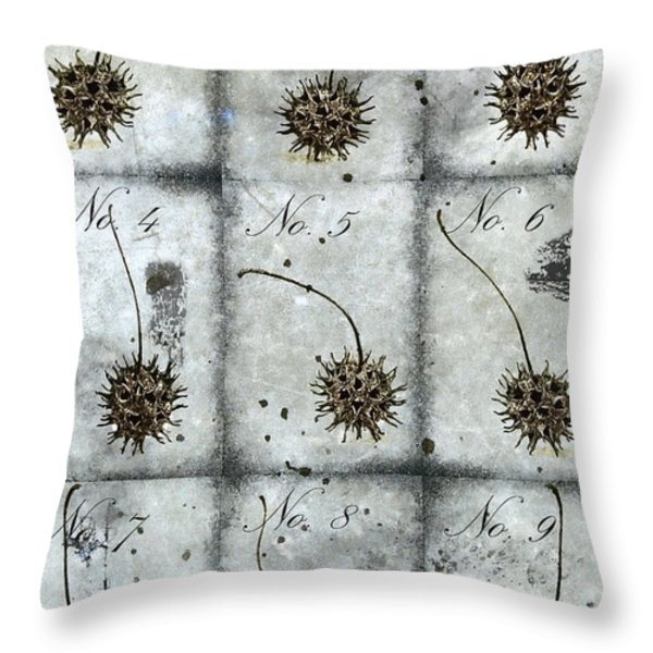 Nine Seed Pods Throw Pillow by Carol Leigh