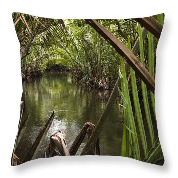 Nipa Palms Line A Channel Throw Pillow by Tim Laman