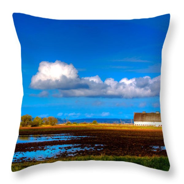 Nisqually Wildlife Refuge P35 Throw Pillow by David Patterson