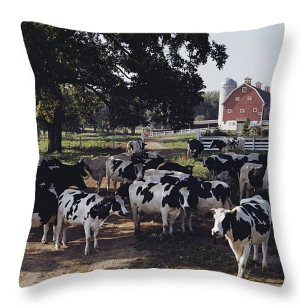 No Captions Throw Pillow by B. Anthony Stewart