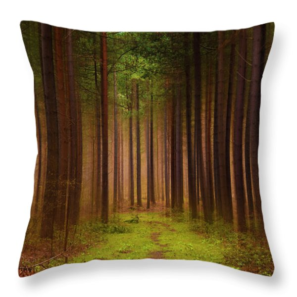 No Way Out Throw Pillow by Svetlana Sewell