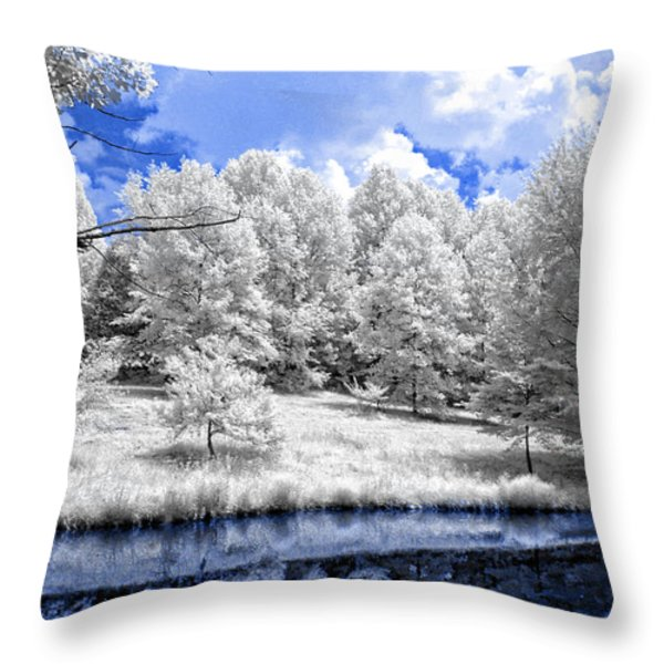 Nobob Pond Ir Throw Pillow by Amber Flowers
