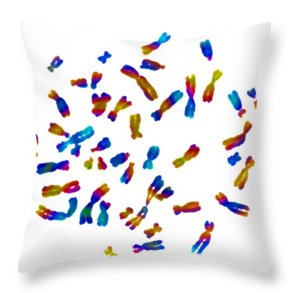 Normal Female Karyotype Throw Pillow by Omikron