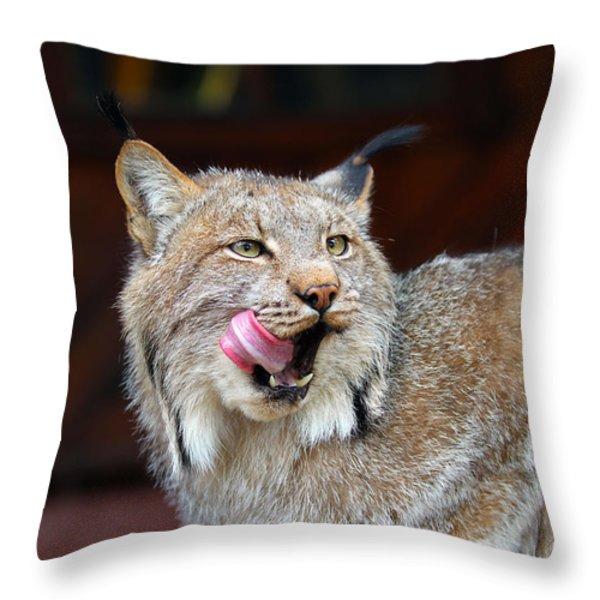 North American Lynx Throw Pillow by Paul Fell