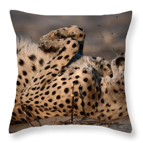 Not Even A Swarm Of Flies Disturbs An Throw Pillow by Chris Johns