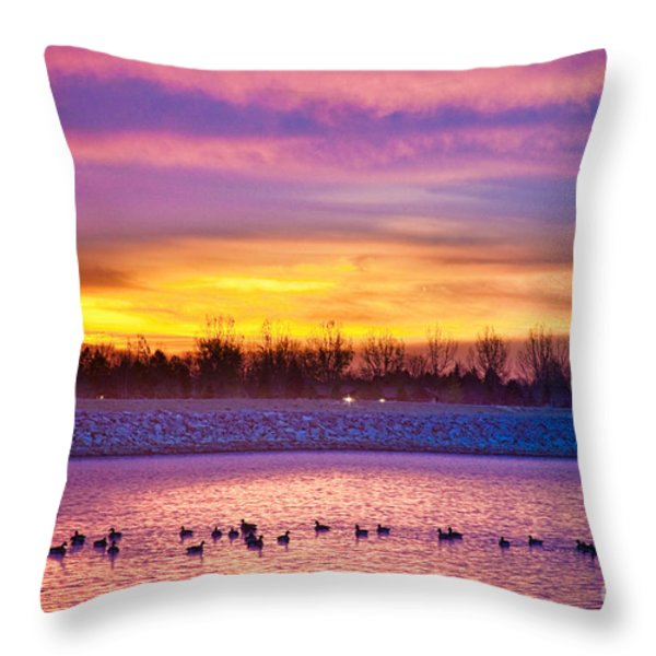 November Lagerman Reservoir Sunrise  Throw Pillow by James BO  Insogna