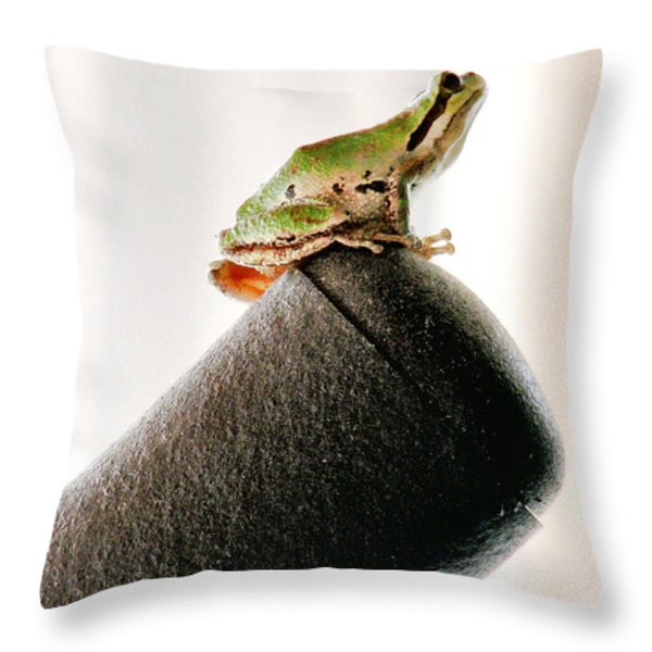 Now What? Throw Pillow by Rory Sagner