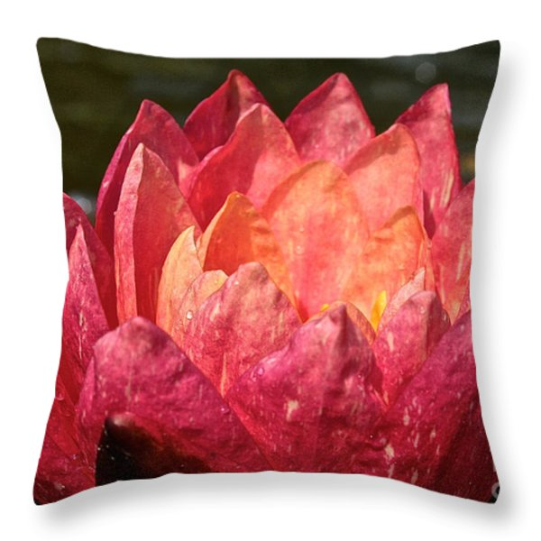 Nymphaea Profile Throw Pillow by Susan Herber