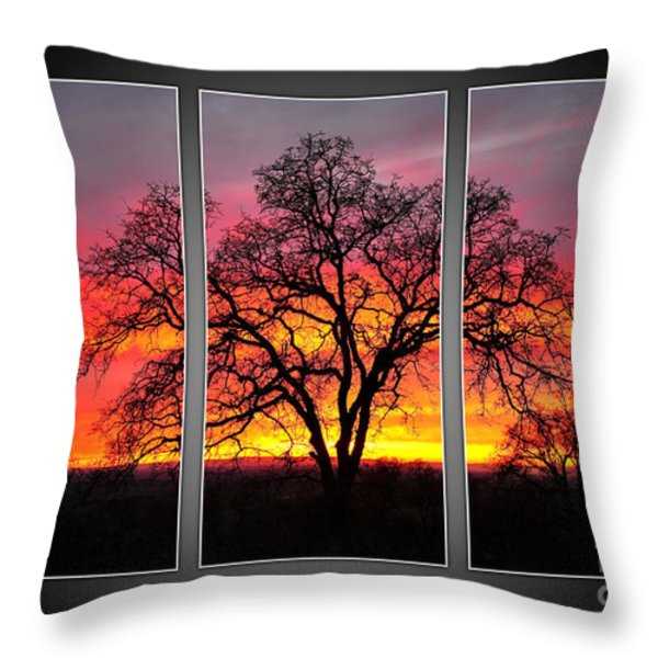 Oak Silhouette Tryptych 1 Throw Pillow by Cheryl Young