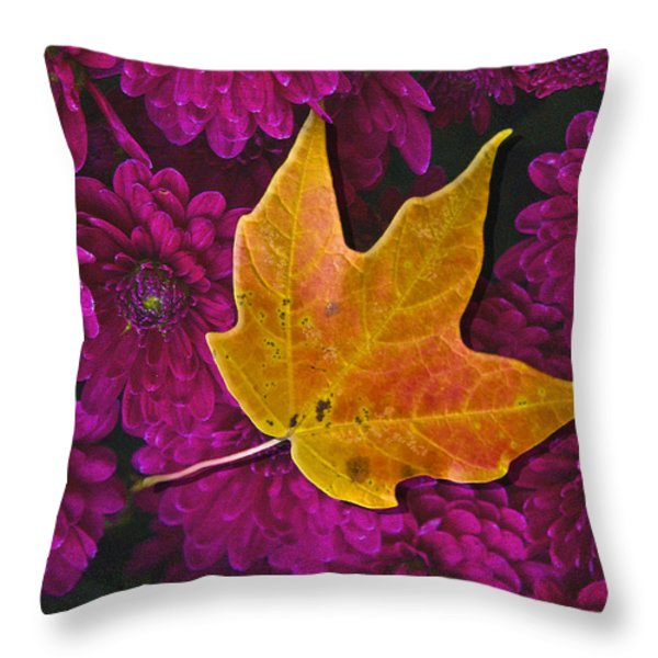 October Hues Throw Pillow by Paul Wear