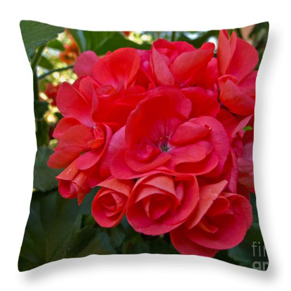 Oh My Red Throw Pillow by Arlene Carmel