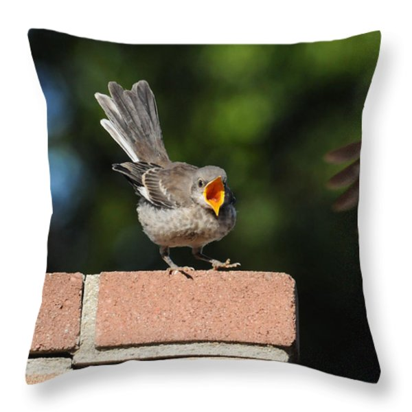 Oh...So Demanding Throw Pillow by Lynn Bauer