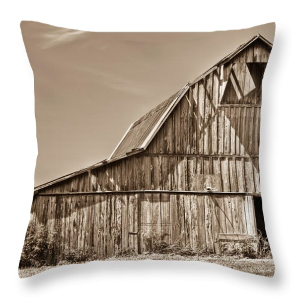 Old Barn In Sepia Throw Pillow by Douglas Barnett