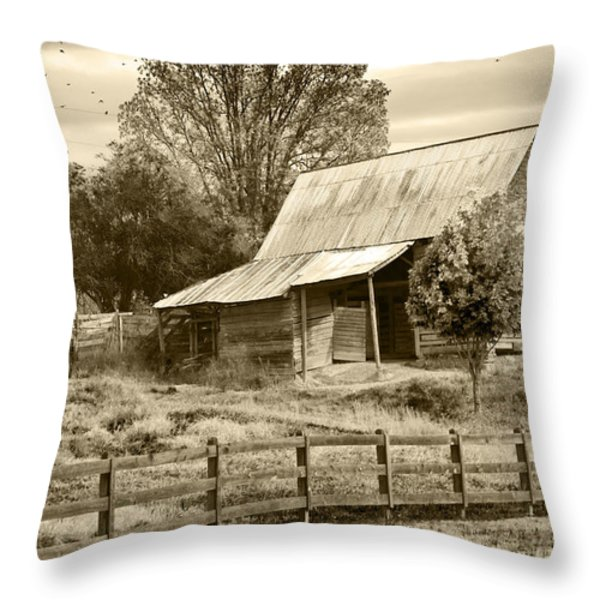 Old Barn Sepia Tint Throw Pillow by Susan Leggett