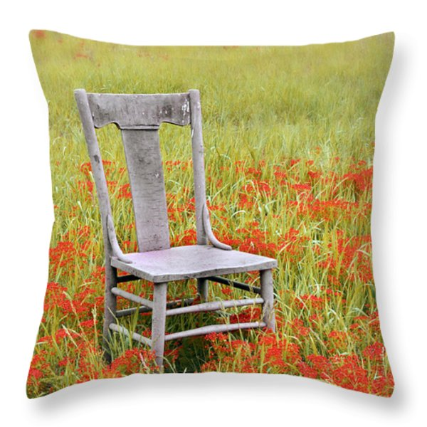 Old Chair In Wildflowers Throw Pillow by Jill Battaglia