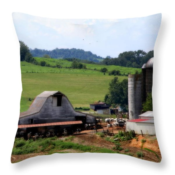 Old Dairy Barn Throw Pillow by KAREN WILES